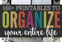 Organising Idea's