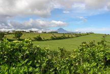 Azoren / Es gibt viel zu sehen auf den 9 Inseln im Atlantik, von denen jede ihren ganz eigenen Charakter hat. Aber das sind die Highlights