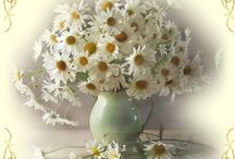 Virágok romantic zene!