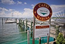 Marina Spotlight / Southern Boating's Marina Resource Guide, check out the marinas in your area, or the area you plan to cruise to; know before you go!