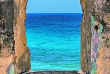 sea all blue