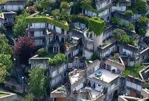 Arquitectura sustentable / Techos verdes y jardines verticales