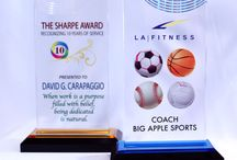 Custom Imprinted Acrylic Awards / Quality acrylic, custom imprinting, made in the USA plus FREE line changes, FREE email proof approval and FREE professional art.  Available on-line at www.acrylinks.com