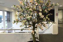 Flowers & Silk / Decoration office hotels Interior Silk Flowers