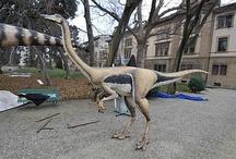 Dinosauri / Un giorno mi sono ricordata che sono esistiti davvero.