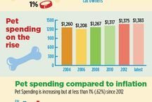 The Buddy Index Infographics / Americans, Pets, Costs, Rewards & Responsibilities