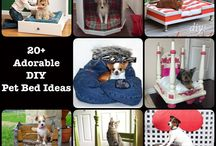 Pets / Useful DIY for Pets