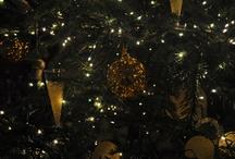christmas trees / by Raffaella B