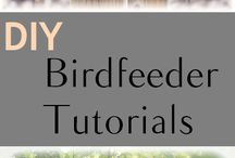 Birds & Bird Feeders