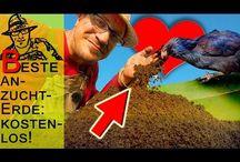 Pferdemist / Du möchtest Deinen Pferdemist oder Deine Pferdeäpfel nachhaltig und effektiv entsorgen? Hier findest Du Tipps und Tricks zum Thema Pferdemist kompostieren