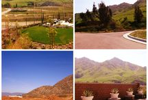 The great outdoors - your backyard / Backyard views from the homes at Spring Mountain Ranch