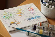 Sketch & Arts