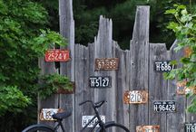 License Plates / by Denise Adams
