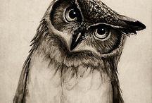 sowa/ owl