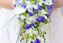 Свадьба Петербург