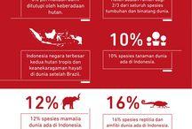 Melindungi Hutan Indonesia / Hutan merupakan rumah bagi duapertiga dari spesies tanaman dan binatang di dunia. Yang berarti ratusan ribu tanaman dan pohon yang berbeda jenis dan jutaan serangga-masa depan mereka juga tergantung pada hutan-hutan purba, mereka menjaga sistem lingkungan yang penting bagi kehidupan di bumi. Selamatkan Hutan Selamatkan Indonesia !
