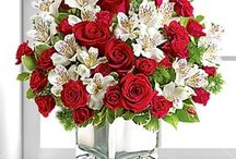 CHRISTMAS COLLECTION / Send Christmas flowers, the perfect gift to celebrate the festive season.