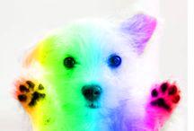 Rainbows, Unicorns, and Puppies Inspiration Challenge