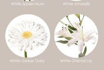 fiori matromonio