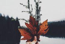 Herfst!