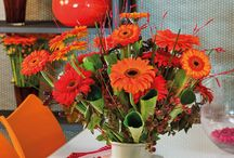 Gentle Geometric / Colourful red and orange gerbera bouquets that are made for inspiration in house