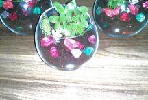 çiçek düzenlemelerim / hepsi kendi el emeğim