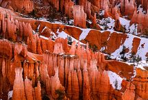 BRYCE CANYON NATIONAL PARK / by Suzy Timm