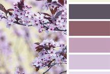 Web Colour Schemes