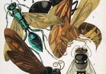 Sci Illustration / Ilustraciones científicas de artistas geniales de todo el mundo.