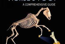 Carte medicina veterinara