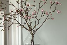 Magnolias and flowers in vase