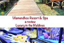 Maldives Travel Tips / Travel tips and guides for booking a holiday in the Maldives
