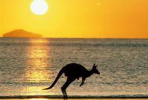 Australia / by Lucy Gates