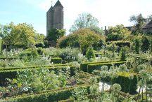 Englands Gärten - the Gardens of England / Auf Tour mit berlingarten zu den schönsten Anlagen.