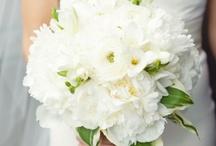 wedding of my dreams! / by Samantha Roepke