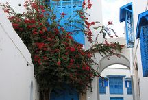 Be in North  Africa / Tunisia-Maroco