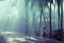Travel / by Crystal Gharini