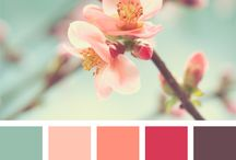 COLORS | Blossom