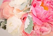 Slavnostní a svatební kytice