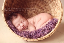 newborn shoot ideas / by Rachel Nickel