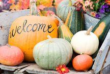 Halloween / Halloween Ideas: Halloween Costumes, Halloween Parties, & Other Spooky Ideas