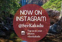 Discovery Month | Kakadu National Park