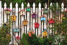 Domki dla ptaków i owadów, karmniki