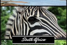 Traveling in Africa