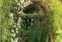 Garden & Furniture Ideas