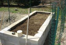 Garden/ Yard Ideas
