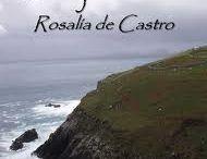 """A prosa de Rosalía de Castro, tan desconocida como feminista. / A súa obra narrativa estivo caracterizada pola súa condición de filla solteira e por ter un oficio que non era ben visto nesa época para unha muller. """"La hija del mar"""" é a súa obra máis romántica, a que máis se acerca a súa vida e ás súas preocupacións facendo un alegato a favor da educación feminina."""