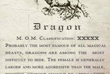 » a natural history of dragons « / book | aesthetic