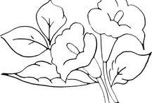 Рисунки, образцы 4