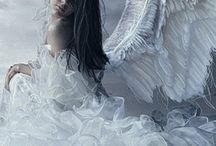 Angel /Feen